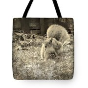 Little Scamp Tote Bag