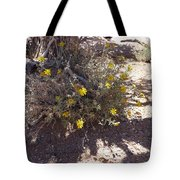 Little Suns Tote Bag