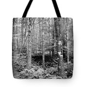 Little Trail Tote Bag