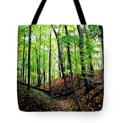 Little Valley 2 Tote Bag