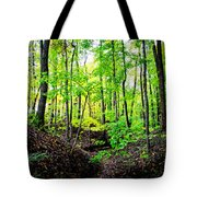 Little Valley 3 Tote Bag