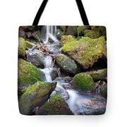 Little Waterfall In Marlay Park Tote Bag