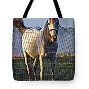 Little White Pony Tote Bag