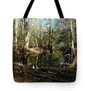 Little Withlacoochee River Tote Bag