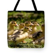 Yellow Muscovy Duck Ducklings Running Fast  Tote Bag