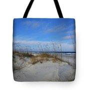 Little Talbot Sand Dunes Tote Bag