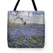 Live Bluebonnets And Dead Tree Tote Bag