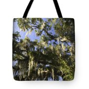 Live Oak Dripping With Spanish Moss Tote Bag