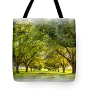 Live Oak Journey Paint Tote Bag