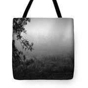 Live Oak Number 2 Tote Bag