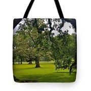 Live Oak Tree At Oak Alley Plantation Tote Bag