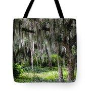 Live Oak Tree II Tote Bag