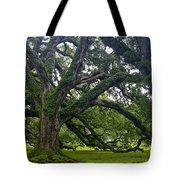 Live Oak Trees Tote Bag