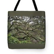 Live Oaks And Spanish Moss B Tote Bag