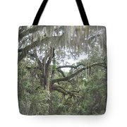 Live Oaks And Spanish Moss C Tote Bag