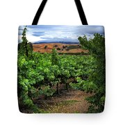Livermore Vineyard 1 Tote Bag