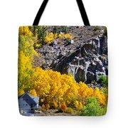Living Among The Aspens Tote Bag