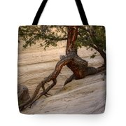 Living Gracefully Tote Bag