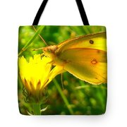 Living In The Light Tote Bag