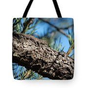 Lizard Bathing In The Sunshine Tote Bag