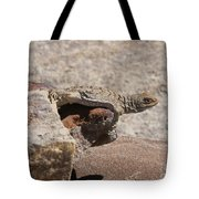 lizard from central Madagascar Tote Bag