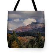 Lizard Head Wilderness Tote Bag