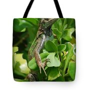 Lizard In Hedge Tote Bag