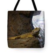 Lizard Of Oz Tote Bag