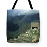 Llama And Rainbow At Machu Picchu Tote Bag by James Brunker