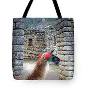 Llama Touring Machu Picchu Tote Bag