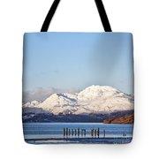 Loch Lomond 01 Tote Bag