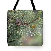 Lodge Pole Pine In The Fog Tote Bag