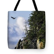 Lofty Bald Eagle Surveys Maines Bold Coast Tote Bag