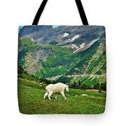 Logan Pass Mountain Goat Tote Bag
