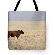 Lone Bull In Grassy Field Tote Bag