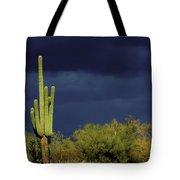 Lone Cactus Sentry Tote Bag