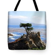 Lone Cypress Tree In Monterey In California Tote Bag