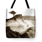Lone Cypress Tree On  Midway Point Pebble Beach California Circa 1916 Tote Bag