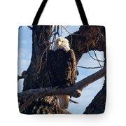 Lone Eagle Tote Bag