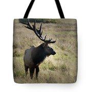 Lone Elk Tote Bag