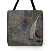 Lone Feather Tote Bag