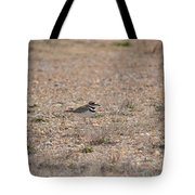 Lone Killdeer Tote Bag