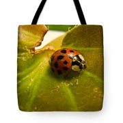 Lone Lady Bird Beetle Tote Bag