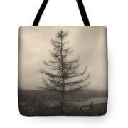 Lone Pine And The Bras D'or Tote Bag