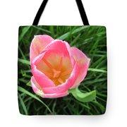 Lone Pink Tulip Tote Bag