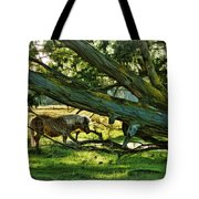 Lone Pony Tote Bag