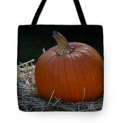 Lone Pumpkin Tote Bag
