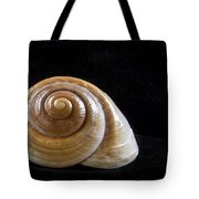 Lone Shell Tote Bag