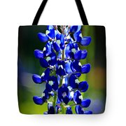 Lone Star Bluebonnet Tote Bag
