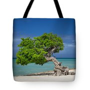 Lone Tree - Aruba Tote Bag
